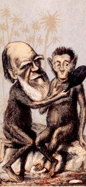 1859년 당시 찰스 다윈을 풍자한 신문 만화.jpg