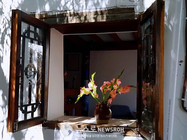 12월의 꽃2.jpg