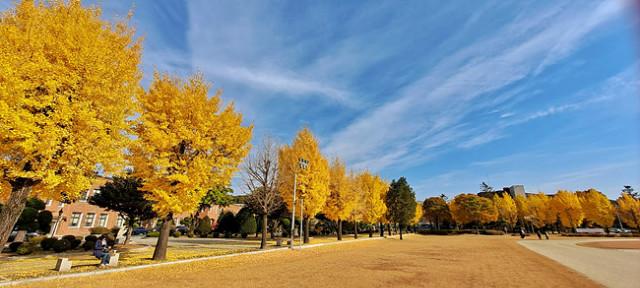 가을소묘12.jpg