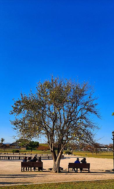가을소묘13.jpg