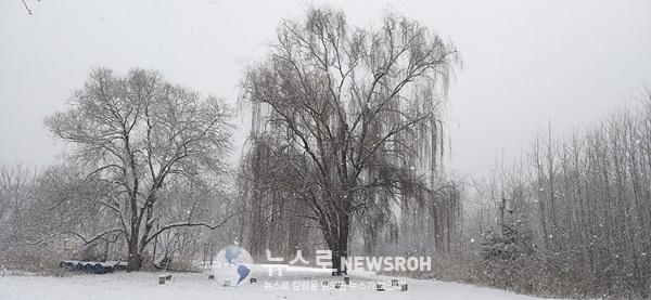 겨울소묘8-1.jpg