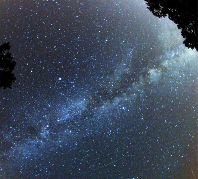 Perseid_Meteor.jpg
